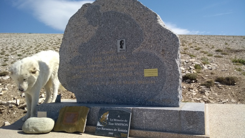 Tommy Simpson's memorial with Pyrenean Mountain Dog - Copy